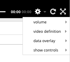 Video Player Settings Menu – VidSwap Help